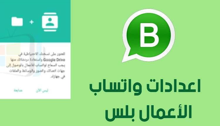 WhatsApp Business Plus Download